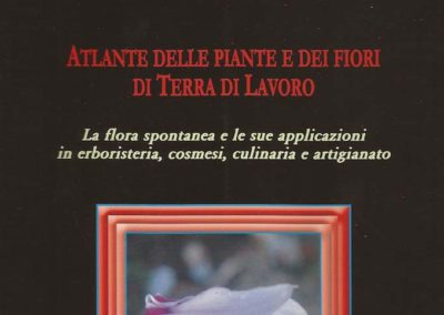 Atlante delle piante e dei fiori di Terra di Lavoro – la flora spontanea e le sue applicazioni in erboristeria, culinaria e artigianato